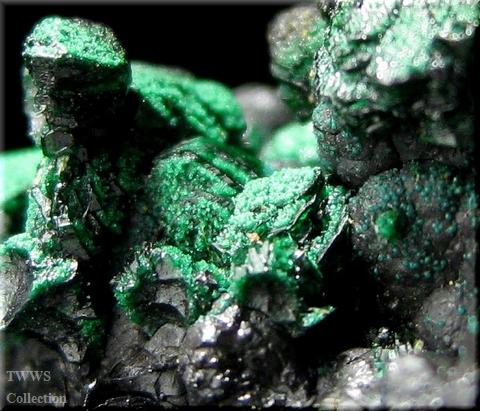 ヘテロゲン鉱孔雀石_コンゴ1アップ