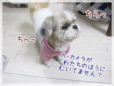 20100301(2).jpg