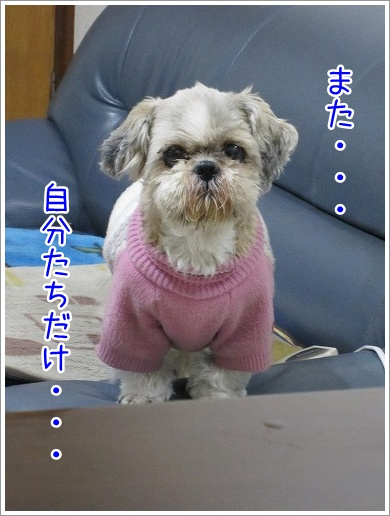 20100308(4).jpg