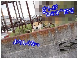 20100313(3).jpg