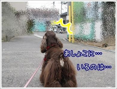 20100315(2)-1.jpg