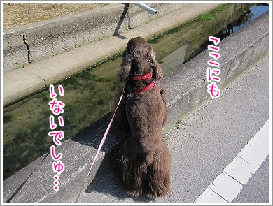 20100319(5).jpg