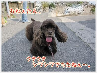 20100324(3).jpg