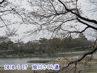 20100327-2(7).jpg