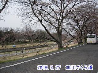 20100327-2(8).jpg