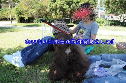 20101014(2).jpg