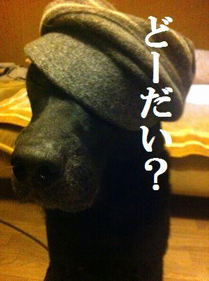 1107blog_jun.jpg