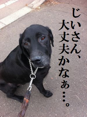 1115blog_jun.jpg