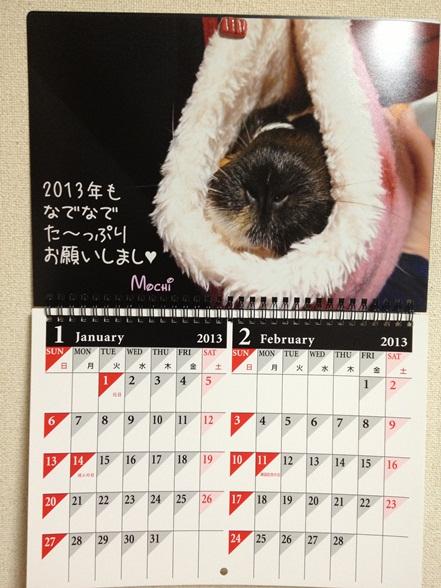 1・2月はもったんのおマヌケ顔♥