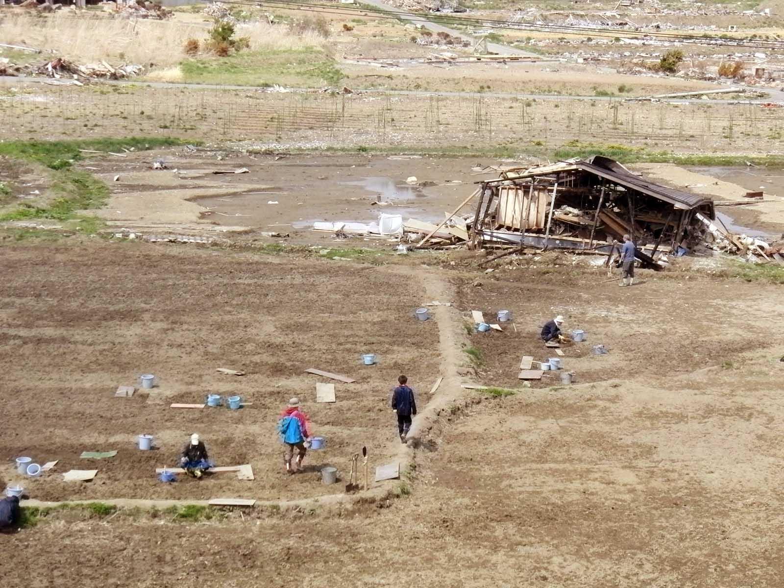 地雷除去班の作業光景。