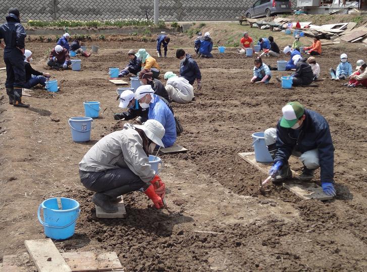 大人も子どもも、田んぼを掘る掘る。