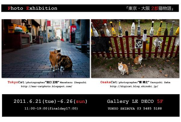「東京・大阪2都猫物語」池口 正和/阪 靖之写真展