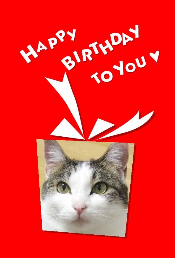 2歳の誕生日、おめでとう!!