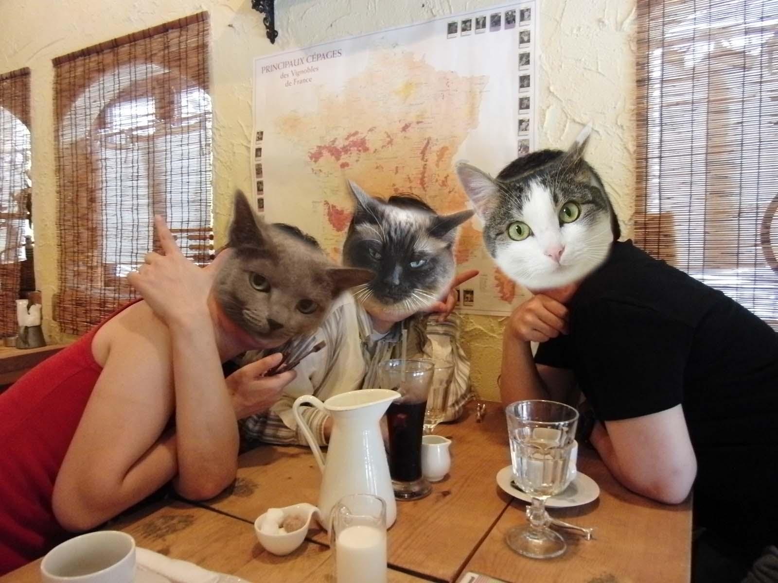 左からイヌマックス氏、Pちゃん、ママB・梅