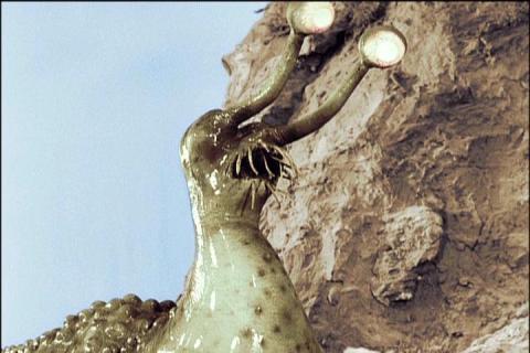 火星怪獣ナメゴン