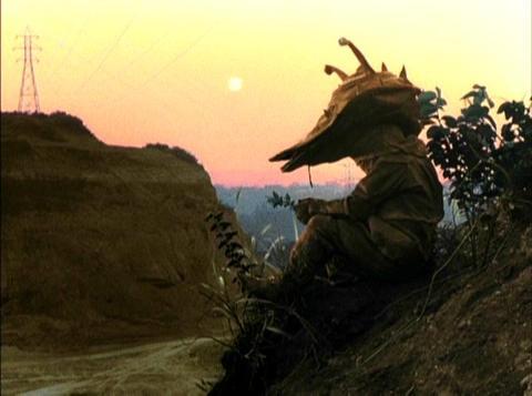 黄昏るカネゴン