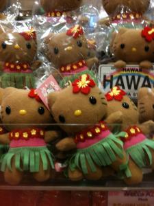 2010Hawaii18.jpg