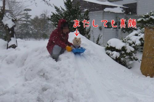 0118b_20120122230708.jpg