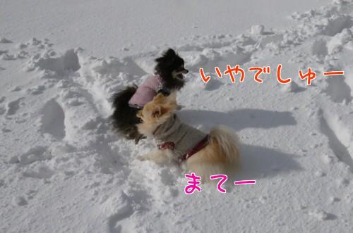 0118h_20120119235317.jpg