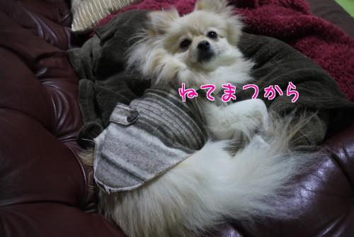 0201d_20120201222022.jpg