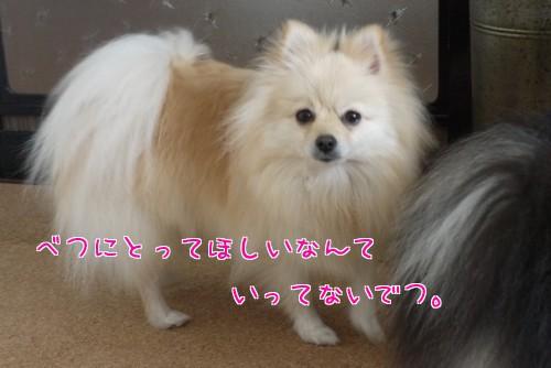 0208c_20120210220311.jpg