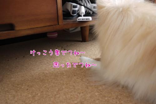 0208e_20120210220310.jpg