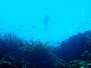 PA030001 2010-10-03 15-38-56