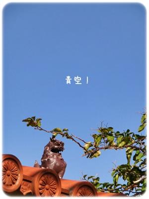 2013_01190009.jpg
