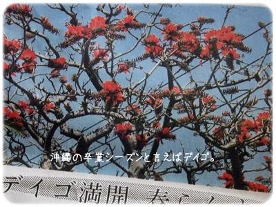 2013_03010015.jpg