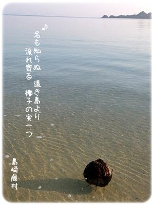 2013_03100008.jpg