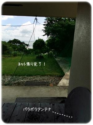 2013_07110015.jpg