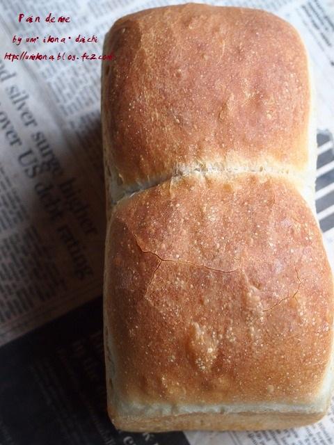 すっぱいパン1