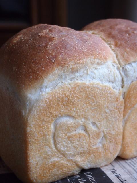 すっぱいパン3