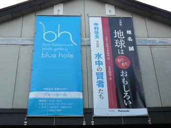 ブルーホール企画展
