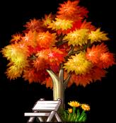 3010257紅葉の木の下で2