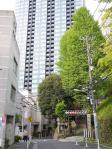 2010三田_4