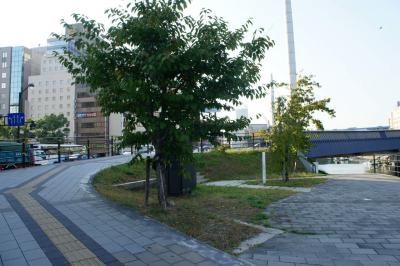 201210ekimaesen-7.jpg