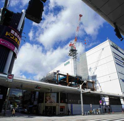 201212tohobuid-9.jpg