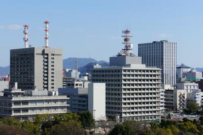 201303hiroshimajo-5.jpg