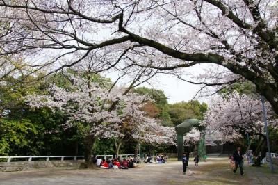 201304hijiyama-2.jpg