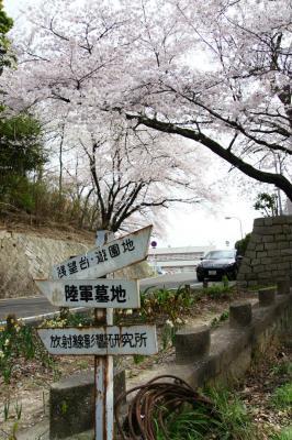 201304hijiyama-8.jpg
