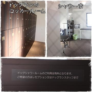 shiga24.jpg