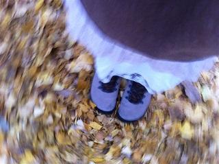 秋がありました