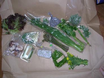 山菜 0010001.jpg