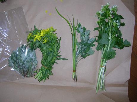 山菜 0030003.jpg