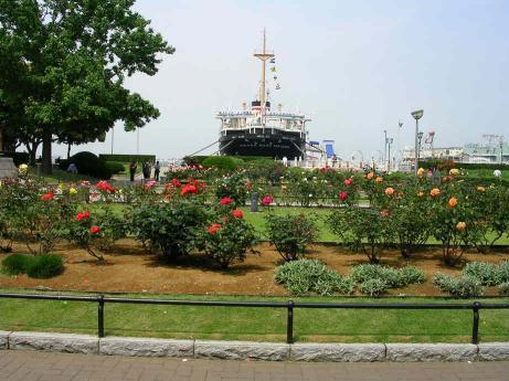 横浜 2006年 6月0001.jpg