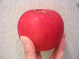 リンゴのクラフティ 0010001.jpg