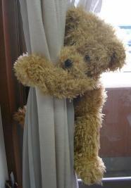 bear 002s.jpg
