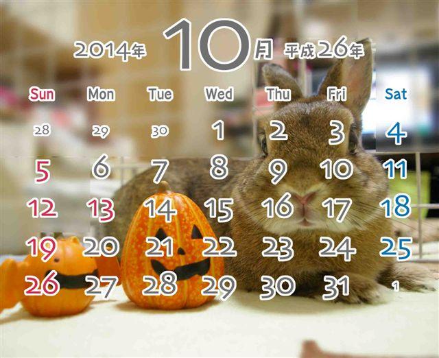 10月カレンダー写真ブログ用
