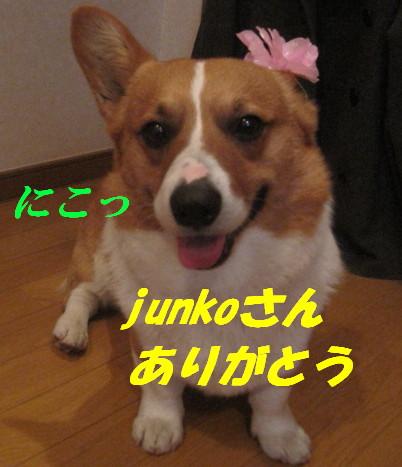 IMG_5575.jpg